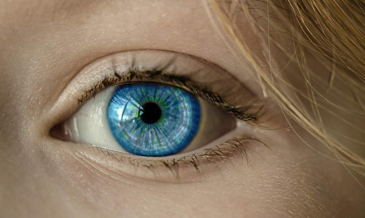 עיין בצבע כחול